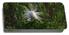 Great Egret Displays Windy Mating Plumage Portable Battery Charger