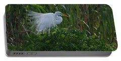 Great Egret Displays Windy Plumage Portable Battery Charger