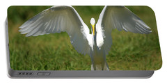 Great Egret In Unusual Portrait Portable Battery Charger