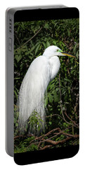 Portable Battery Charger featuring the photograph Great Egret Portrait One by Steven Sparks