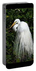 Portable Battery Charger featuring the photograph Great Egret Portrait Two by Steven Sparks