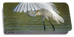 Great Egret Preening 8821-102317-2 Portable Battery Charger