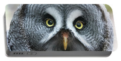 Great Grey Owl Closeup Portable Battery Charger