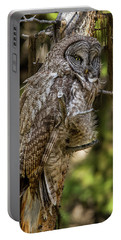 Great Grey Owl In Windy Spring Portable Battery Charger