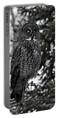 Great Grey Owl Portrait Portable Battery Charger