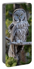 Great Grey Owl Yellowstone Portable Battery Charger