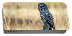 Great Grey Perching Portable Battery Charger