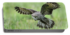 Great Grey's Focused Gaze Portable Battery Charger