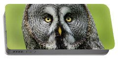 Great Grey's Portrait Closeup Square Portable Battery Charger