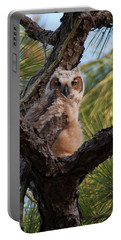 Great Horned Owlet Portable Battery Charger