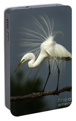 Majestic Great White Egret High Island Texas Portable Battery Charger by Bob Christopher