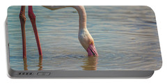 Greater Flamingo In Parc De Camargue, France Portable Battery Charger