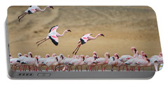 Greater Flamingos Phoenicopterus Portable Battery Charger by Panoramic Images