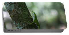Green Anole Portable Battery Charger by Christopher L Thomley