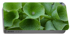 Green Bells Portable Battery Charger