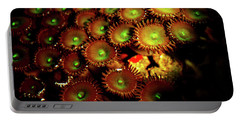 Portable Battery Charger featuring the photograph Green Button Polyps by Anthony Jones