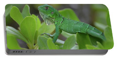 Green Common Iguana In Shrubbery Portable Battery Charger