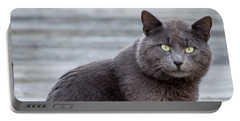 Portable Battery Charger featuring the photograph Green Eye Stare Cat Square by Terry DeLuco