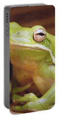 Green Frog Portable Battery Charger by J R Seymour