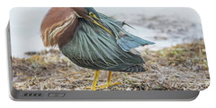 Green Heron 1334 Portable Battery Charger