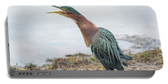 Green Heron 1336 Portable Battery Charger