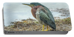 Green Heron 1340 Portable Battery Charger
