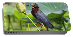 Green Heron, Brazos Bend State Park II Portable Battery Charger
