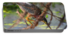 Green Heron Brazos Bend State Park Portable Battery Charger