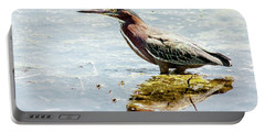 Portable Battery Charger featuring the photograph Green Heron Bright Day by Robert Frederick