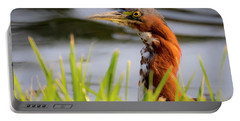 Green Heron Closeup  Portable Battery Charger