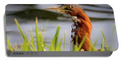 Green Heron Closeup  Portable Battery Charger