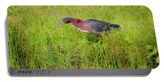Portable Battery Charger featuring the photograph Green Heron On The Hunt by Ricky L Jones