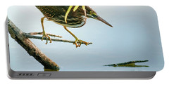 Portable Battery Charger featuring the photograph Green Heron Sees Minnow by Robert Frederick