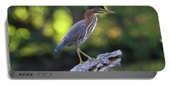 Green Heron Stump Portable Battery Charger