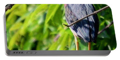 Green Heron Portable Battery Charger by Sumoflam Photography
