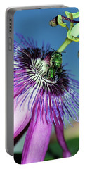 Green Hover Fly On Passion Flower Portable Battery Charger