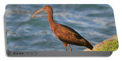 Green Ibis 4 Portable Battery Charger