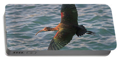 Green Ibis 6 Portable Battery Charger