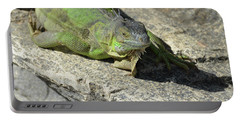 Green Iguana Resting In The Sun Portable Battery Charger by DejaVu Designs