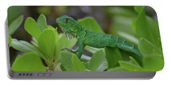Green Iguana Walking On The Tops Of A Shrub Portable Battery Charger by DejaVu Designs