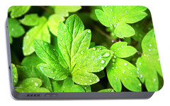 Portable Battery Charger featuring the photograph Green Leaves by Christina Rollo