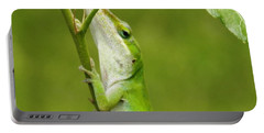 Green Lizard On Hold Portable Battery Charger