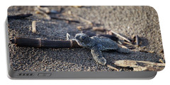 Green Sea Turtle Hatchling Portable Battery Charger