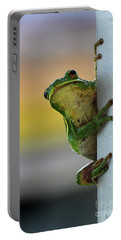 Green Tree Frog  It's Not Easy Being Green Portable Battery Charger