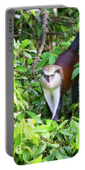 Portable Battery Charger featuring the photograph Grenada Monkey by Arthur Dodd
