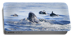 Grey Whale 1 Portable Battery Charger