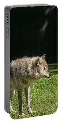 Grey Wolfe In Close Up Portable Battery Charger by Patricia Hofmeester