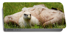 Griffon Vulture Portable Battery Charger