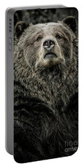 Portable Battery Charger featuring the photograph Grizzly Bear by Brad Allen Fine Art