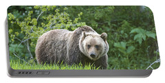 Portable Battery Charger featuring the photograph Grizzly Bear by Gary Lengyel